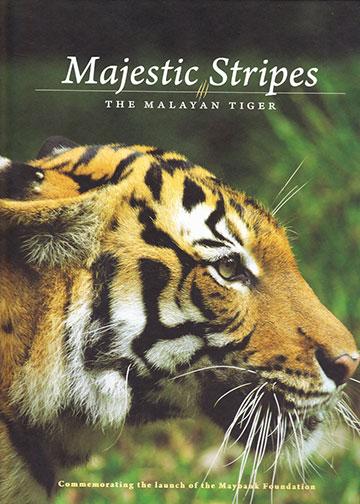 majestic-stripes-cover